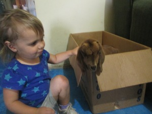 Yes, that is Nora with a goat that was in one family's house. She loved playing with it.