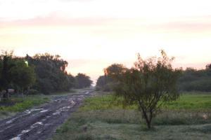muddy street2