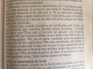 spanish-bible-text-pic