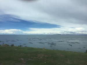Trout farms on Lake Titicaca